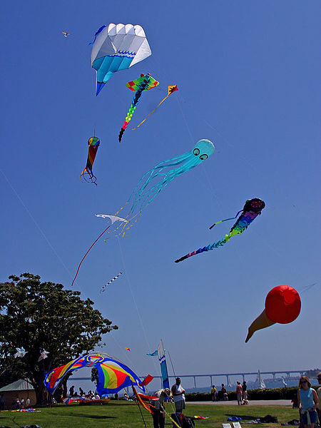 Kites in Flight