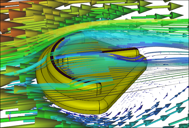 CFD Water Flow Simulation over a Parvancorina